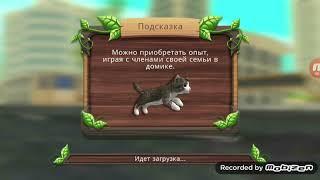 Играю в онлайн в игре CatSim