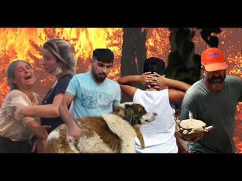 YANGIN: TÜRKİYE'NİN ALEVLERLE MÜCADELESİ / WILDFIRES IN TURKEY