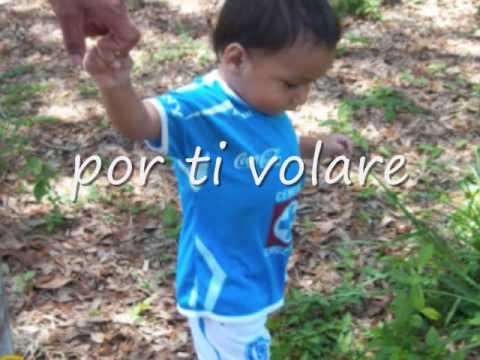 Por Ti Volare lyrics by Andrea Bocelli - original song ...
