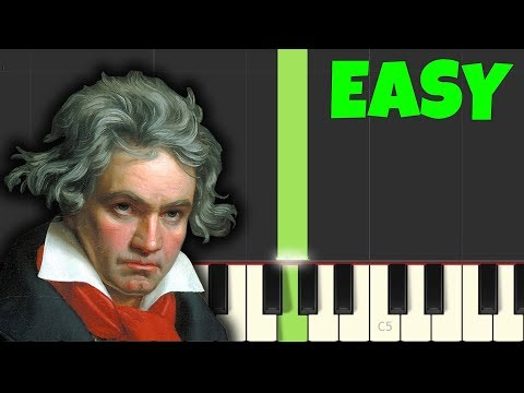 HOW TO PLAY Fur Elise [FOR TOTAL BEGINNERS] (Easy Piano Tutorial)