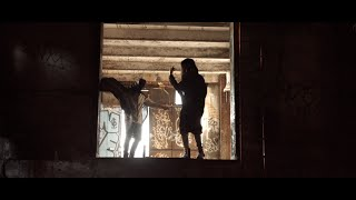 Download lagu The Doppelgangaz - H.I.T.H. (Official Video)