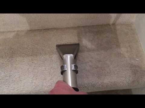 Carpet Steam Cleaning London by CleanExpert