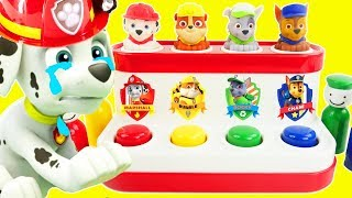 Best Preschool Learning Colors Video for Children Paw Patrol Wrong Heads Baby Colours Song