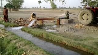 222 Adeel Ahmed agriculture farm @depalpur, pakistan.mp4