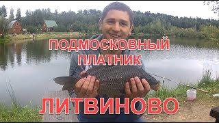 Подмосковный платник Литвиново