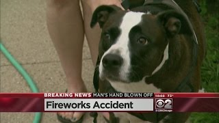 Man Blows Hand Off In Fireworks Accident, Dog Retrieves It