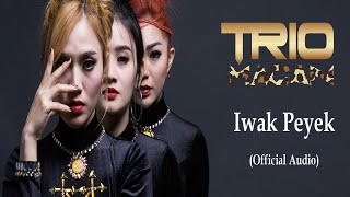 Gambar cover Trio Macan - Iwak Peyek (Official Audio)