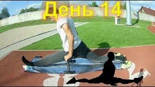 Спорт | #128 Шпагат, день 14!