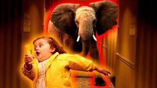 Co w tym pokoju robi słoń!!! (Distraint) #2