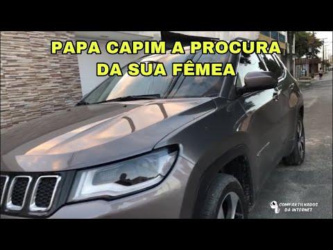PAPA CAPIM A