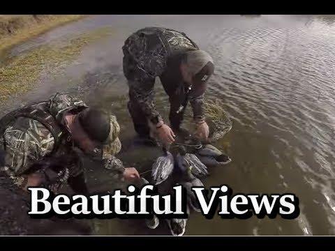California Duck Hunting 2016