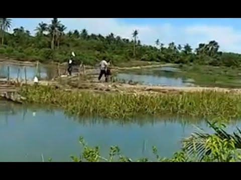 BNN Gerebek Pengedar Narkoba di Aceh