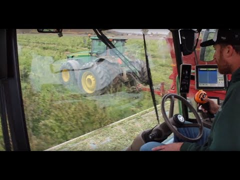Hemp Harvest Cab Cam