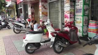 Вьетнам. Вьетнамские дома