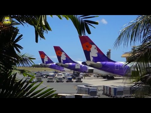"AMAZING Hawaiian A330 ""First Class"": 9:20 hrs DOMESTIC HNL to JFK!!! [AirClips full flight series]"