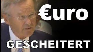 Bundestag : Euro war von Beginn an zum scheitern verurteilt