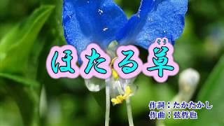 新曲『ほたる草』山本譲二 カラオケ 2017年11/15発売