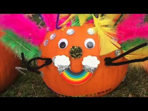 Dedham School's Pumpkin Fun!