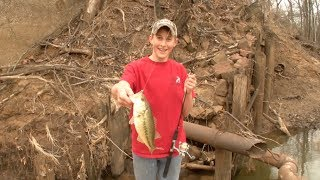 bank fishing for creek bass with the kids