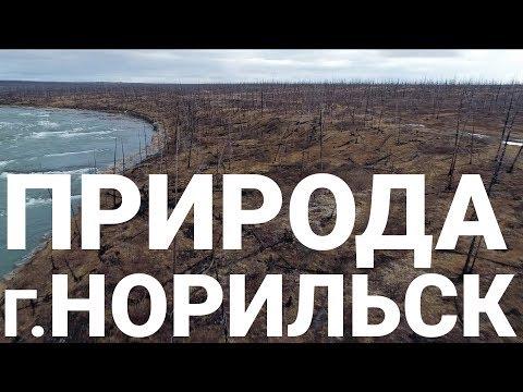 Природа г.Норильска, Красноярский Край