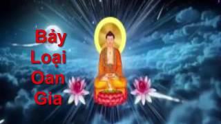 Bảy Loại Oan Gia- Phật Tử Tại Gia Nghe Để Tránh Oan Gia Trái Chủ