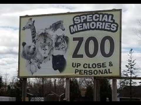 For sale: Abandoned WI roadside zoo with a history of animal mistreatment