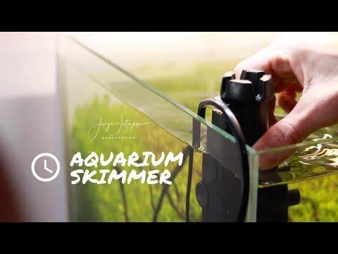 Clean Water Surface After Trimming Aquarium Plants W. Eheim Skim350 Skimmer