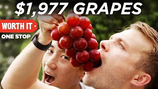 connectYoutube - $1,977 Japanese Grapes
