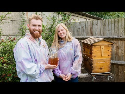 Daisy & Cameron Flow Hive beekeeping and honey harvesting in the UK