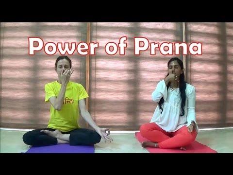 Nadi Shodhana Pranayama | Anuloma Viloma Pranayama | Alternate Nostril Yoga Breathing | Vyfhealth
