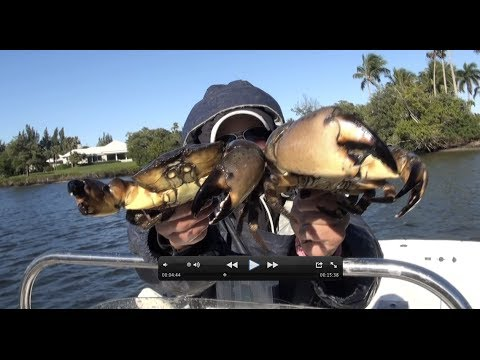 Catching, Cooking And Eating: Blue Crabs And Stone Crabs Same Time!