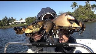Cooking | Catching, Cooking and Eating Blue Crabs and Stone Crabs same time!