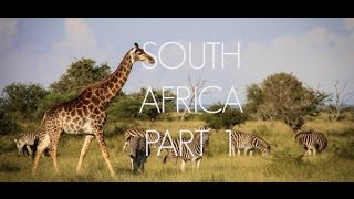 South Africa Part 1 - Johannesburg, Panorama Route, and Kruger Park