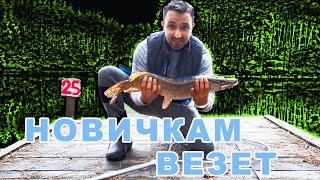 Рыбалка на спиннинг Ловля Щуки осенью Первый трофей на спиннинг