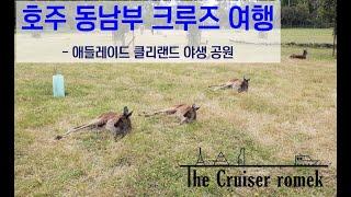 호주 동남부 크루즈 여행 - 애들레이드 클리랜드 야생 …
