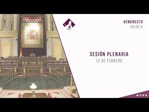 EN DIRECTO: Sesión Plenaria en el Congreso de los Diputados