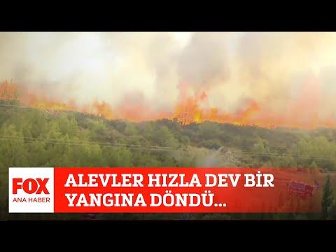 Alevler hızla dev bir yangına döndü... 2 Ağustos 2021 FOX Ana Haber