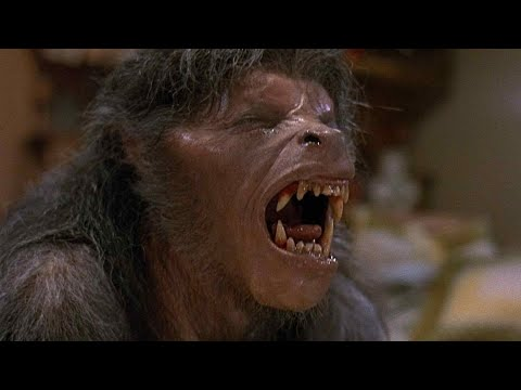 American Werewolf in London  Bad Moon Rising Scene