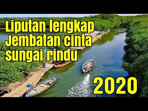 liputan-lengkap-wisata-jembatan-cinta-sungai-rindu-hutan-mangrove-muara-tawar-bekasi