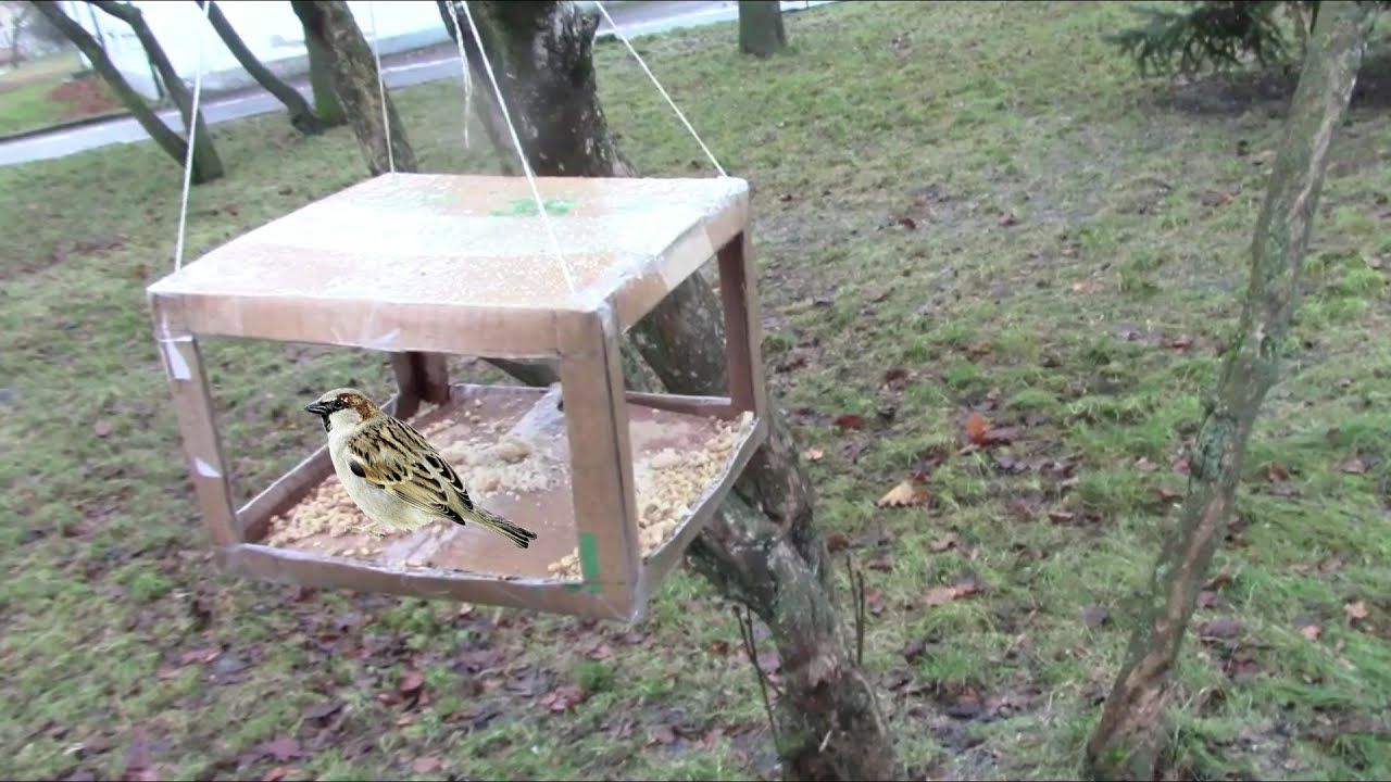 Делаем кормушку для птиц.