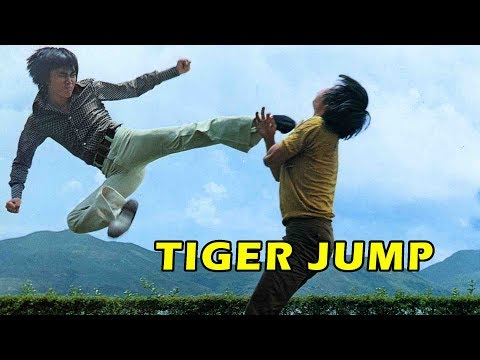 Wu Tang Collection - Tiger Jump