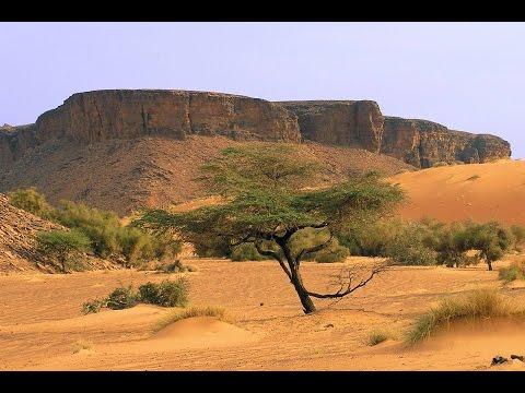 """Il mondo insieme"" - I viaggi: Mauritania"