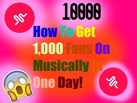 How to get 1k fans on musically! 100% WORKING!!