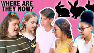 HOUSE RABBIT MAKEOVER | WHERE ARE THEY NOW? | EPISODE 5