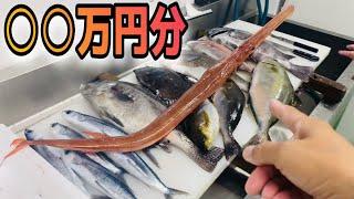 津本式に目利きを叩き込まれた弟子の選び抜いた鮮魚BOX @究極の血抜き津本式/Tsumoto