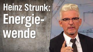 Experte für Energiewende Heinz Strunk