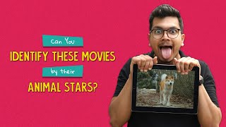 Can You Identify These Movies By Their Animal Stars? | Ok Tested