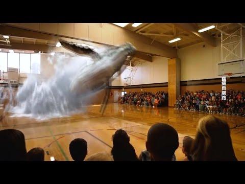 虛擬實境就在眼前!Magic Leap眼球投射【大千世界】擴增實境|光場信號|Google |Rony Abovitz