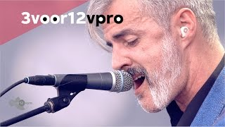 Triggerfinger - By Absence Of The Sun (live op Pinkpop Festival 2015)