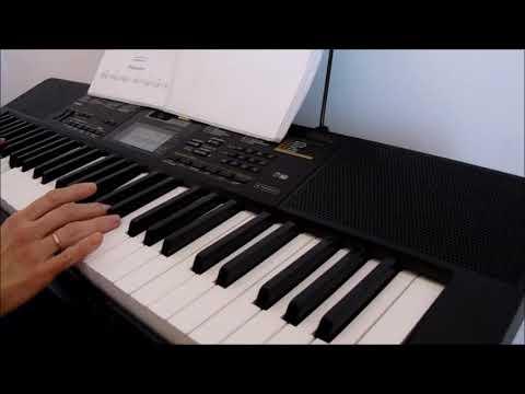 """""""Полет кондора"""" на синтезаторе"""